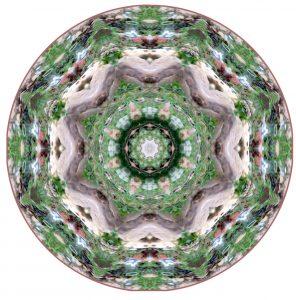 Meditate Mandala